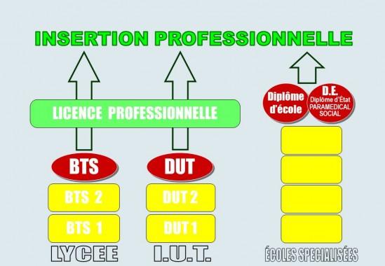 BTS et IUT : filères ouvertes et à double compétence