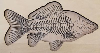 Puzzle du poisson faisant apparaître le squelette dans le fond